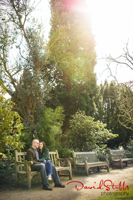 sun in Didsbury photo