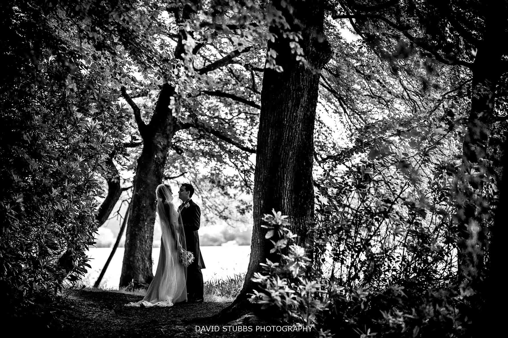 phot of newly weds in woods
