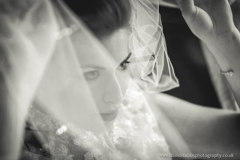 stunnign photograph of the bride