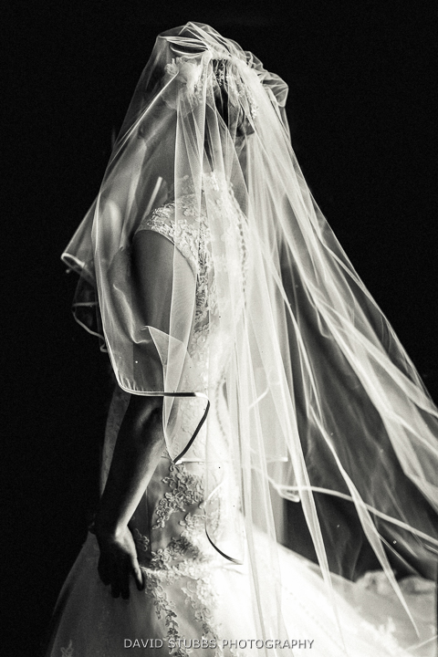 black and white photo of veil