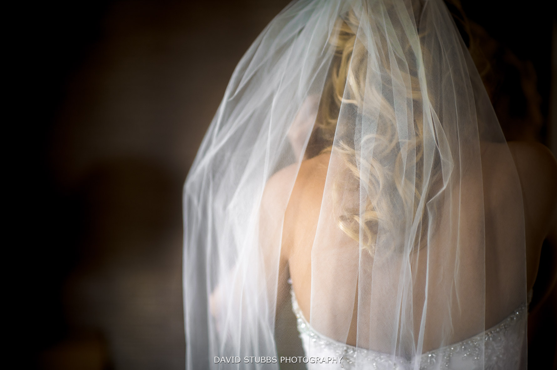 veil detail from behind