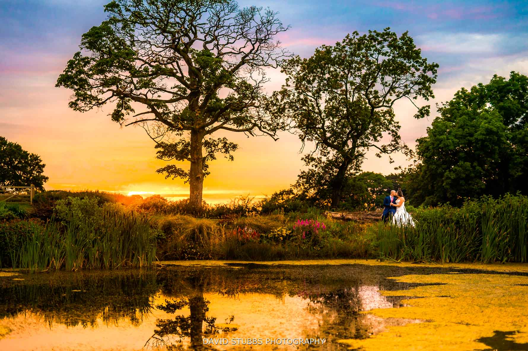 sunset over the pond at Stanley house wedding