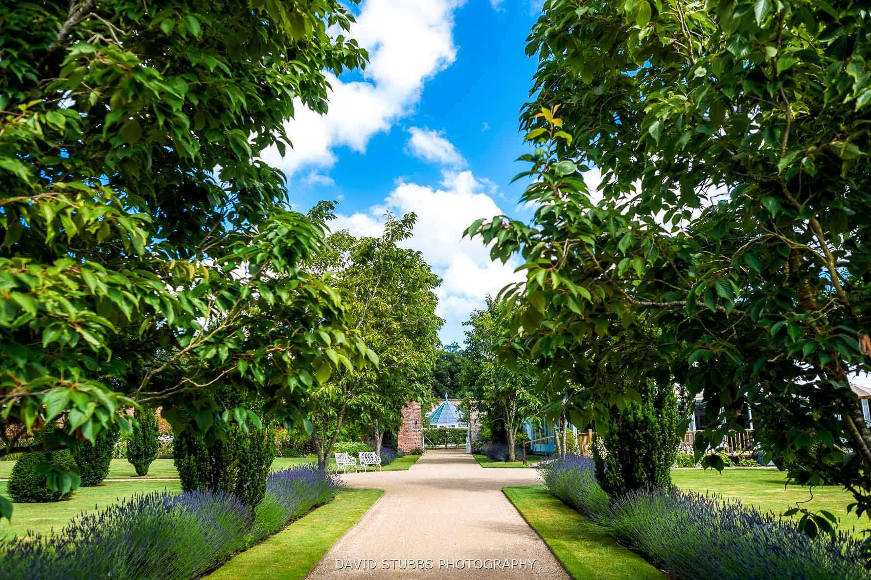 combermere abbey in the summer