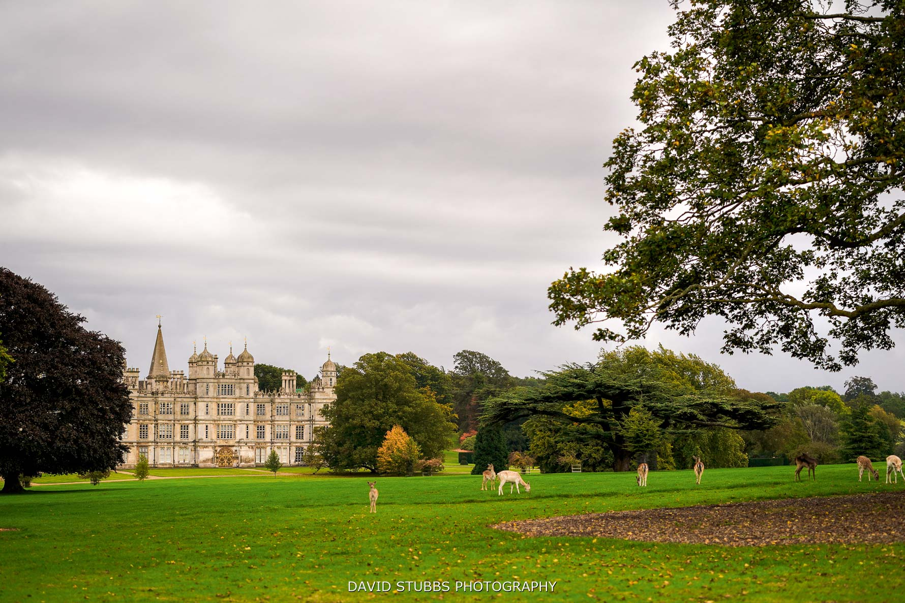 burghley house view