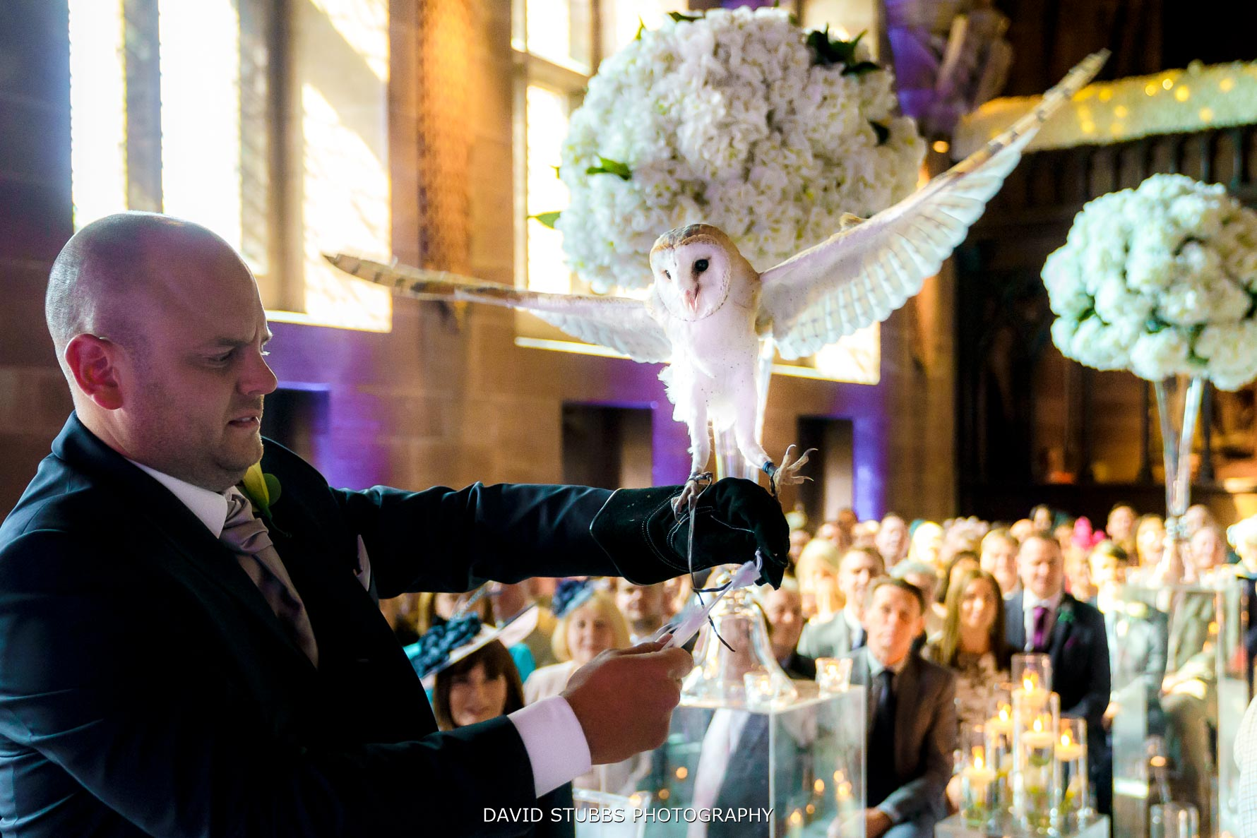 owl delivering rings at peckforton castle