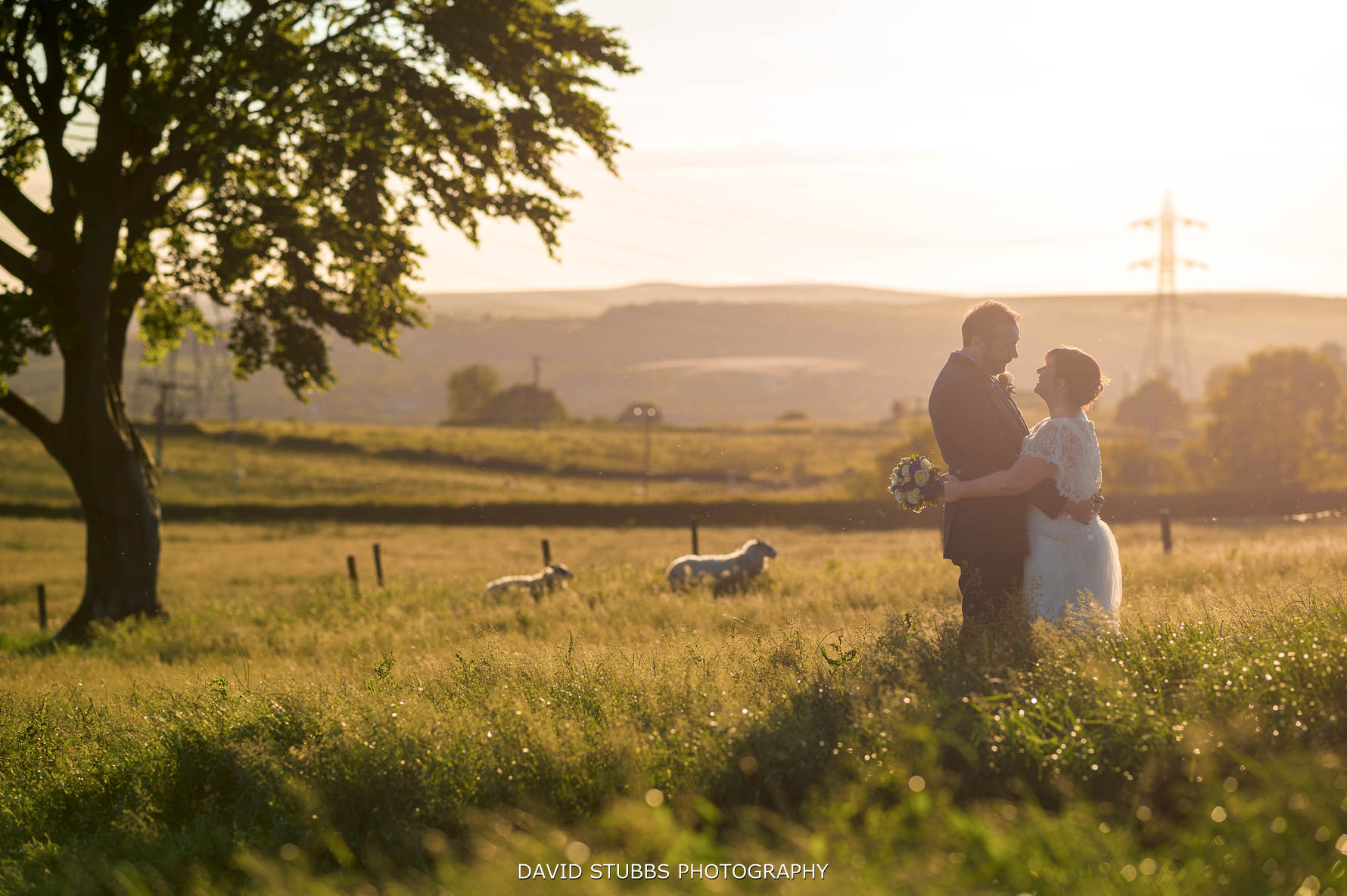 sunset at wellbeing farm wedding